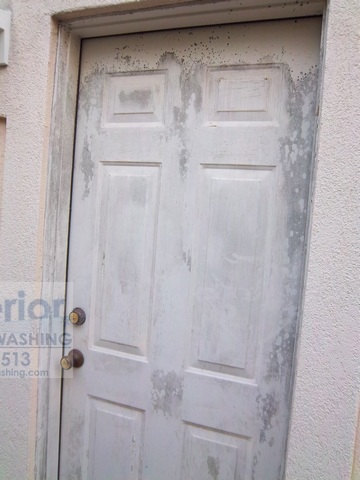 Cleaning Mold Mildew on door of Stucco House 2 before